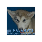 Malamute Radio