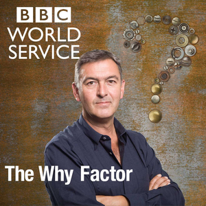 The Why Factor Logo