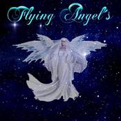 flyingangels