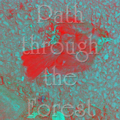 path_through_the_forest
