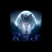 Radio Team Spirit