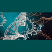 Quilo de Ciencia - Cienciaes.com