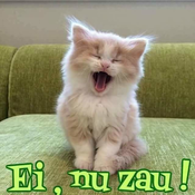 Radio_Luceafar